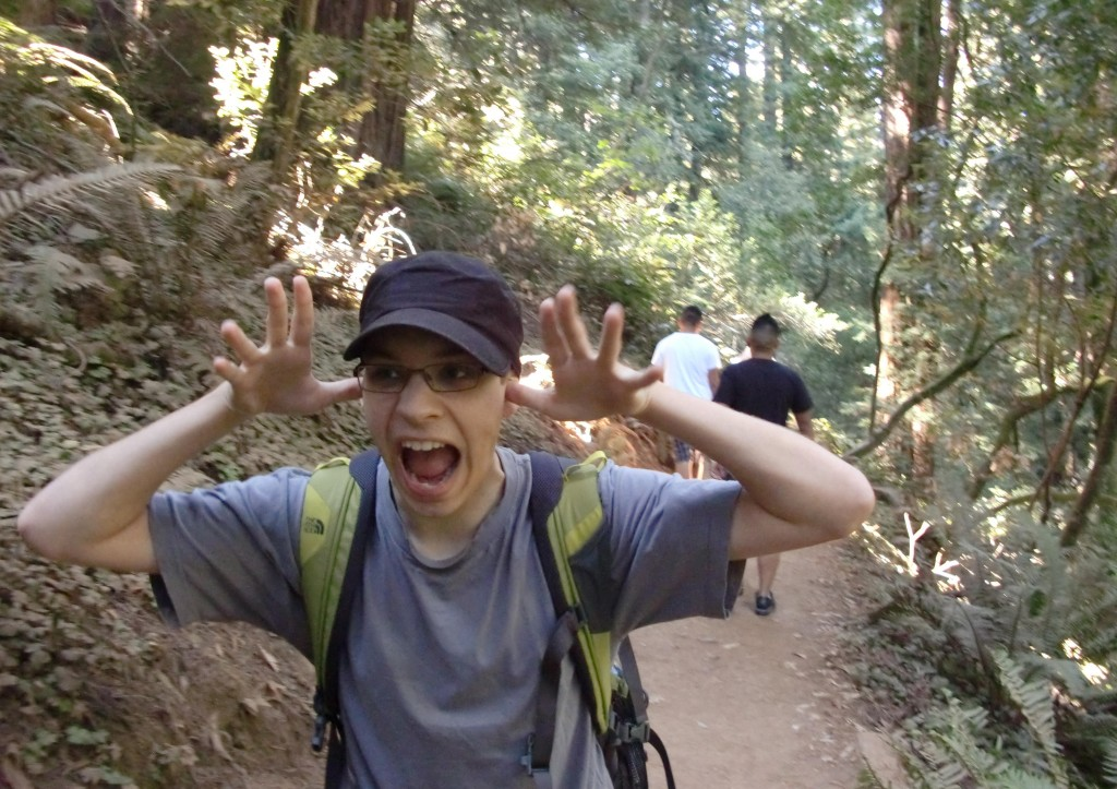 Niklas in Muir Woods.